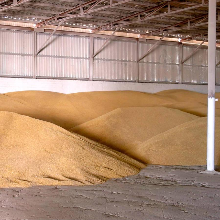 Grain Ventilation